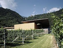 Winery Nals  Margreid