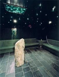 Arlberg Well.com - steam bath