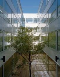 Donauklinikum Tulln - courtyard with trees