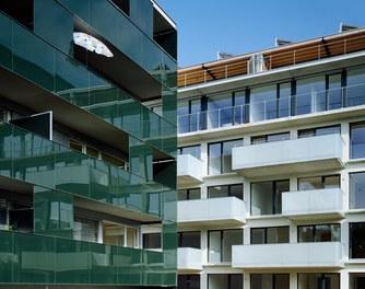 Revitalization Velag Area - detail of facade