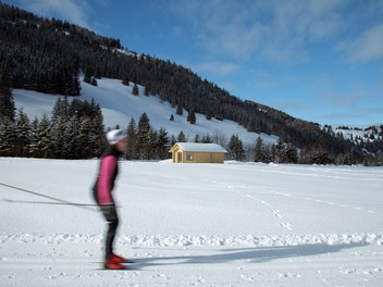 Valüna Lopp - Cabin for Cross-Country Skiers - action