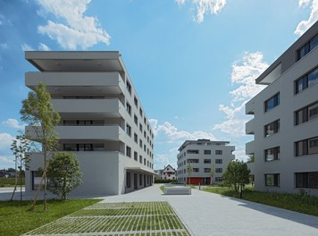 Housing Estate Widum West - approach