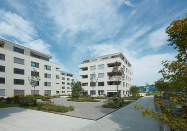 Housing Estate Widum West - courtyard