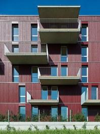 Housing Estate and Kindergarten Steinbockallee - detail of facade