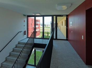 Housing Estate and Kindergarten Steinbockallee - staircase
