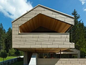 Residence S - detail of facade