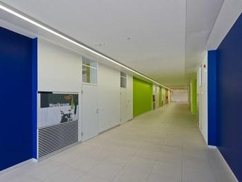Bundesschulzentrum Ried - staircase
