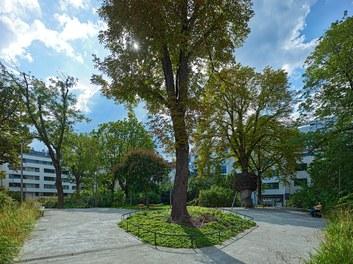 Viktor-Frankl-Park - general view