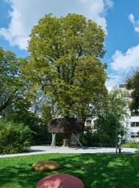 Viktor-Frankl-Park - tree house