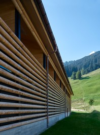 M Preis + Apartment House - detail of facade