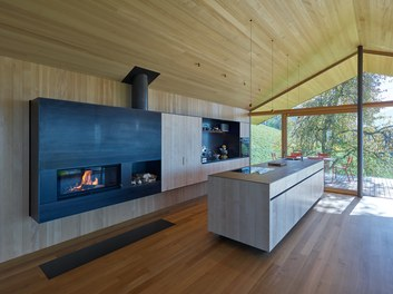 Residence D - kitchen with fire place